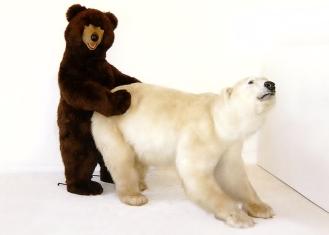Bruine plus ijsbeer