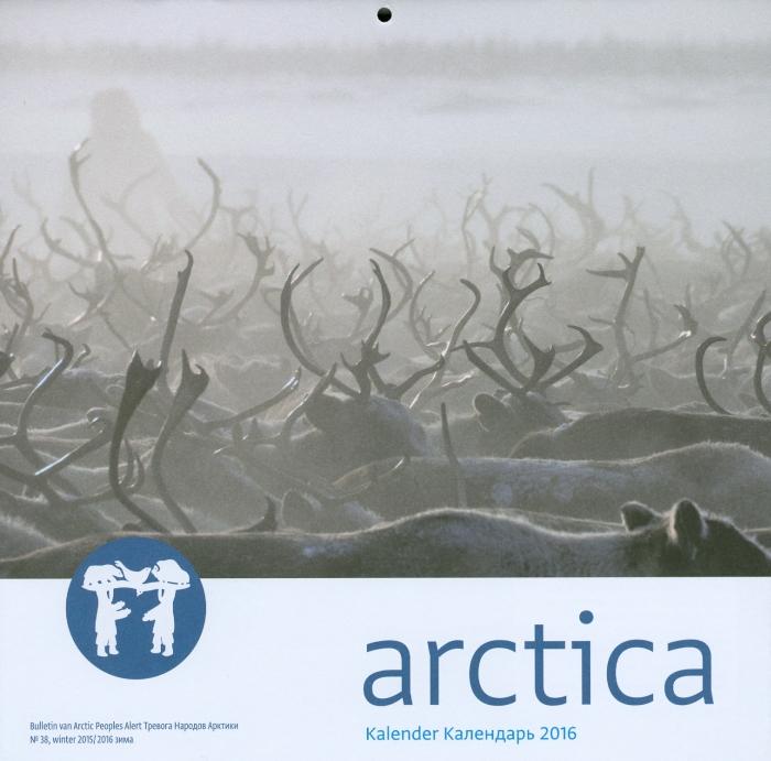 38 Arctica 2016